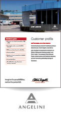Acraf Angelini -  Customer Profile