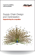 Supply Chain Design and Optimization - Outperforming the Competition